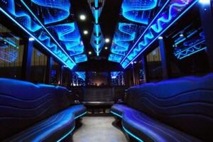 20 people party bus ft lauderdale